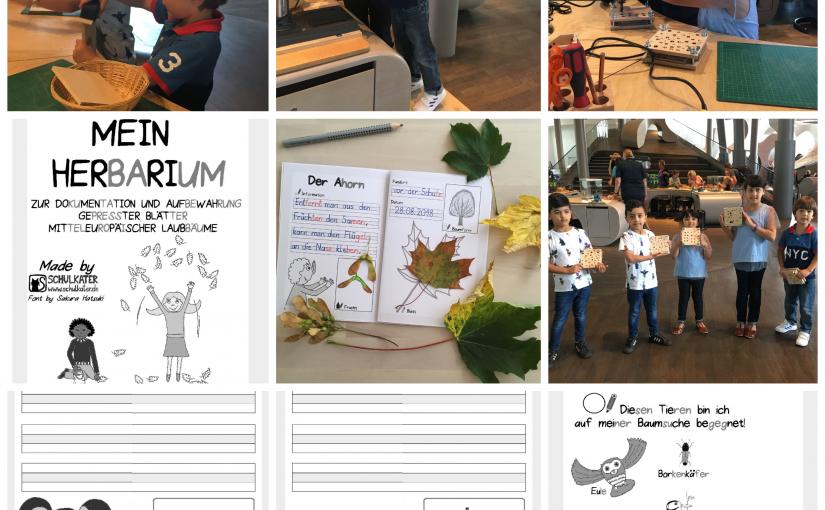 Es ist Herbst!!!! Eine Blätterpresse aus der Autostadt und ein Herbarium für die Schüler