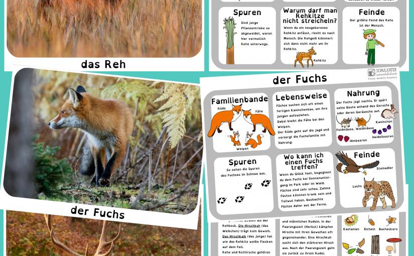 Ergänzende Karten zur Waldtierkartei: Fuchs, Reh und Rothirsch