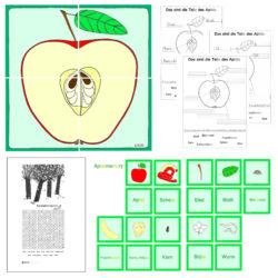 Apfel-Aufbau