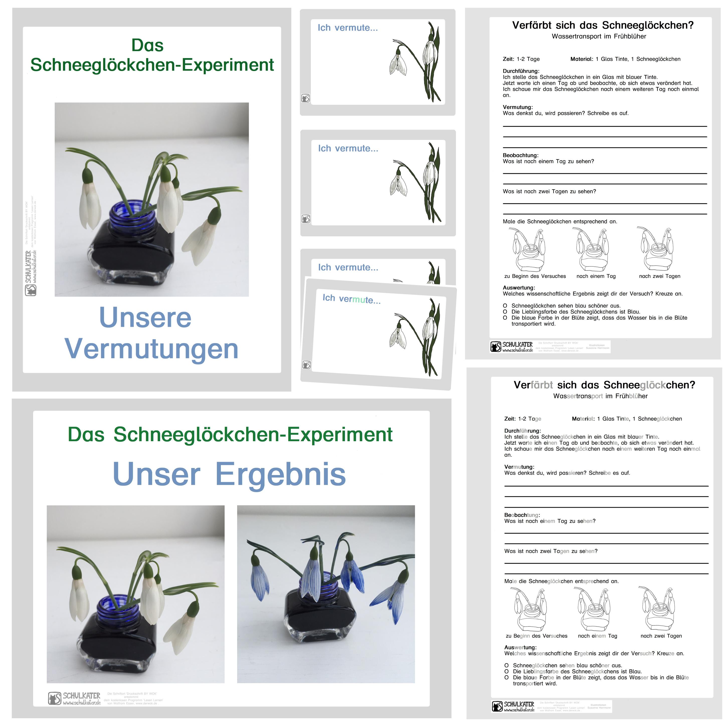 Niedlich Kostenlose Professionelle Setzt Vorlagen Fort Galerie ...