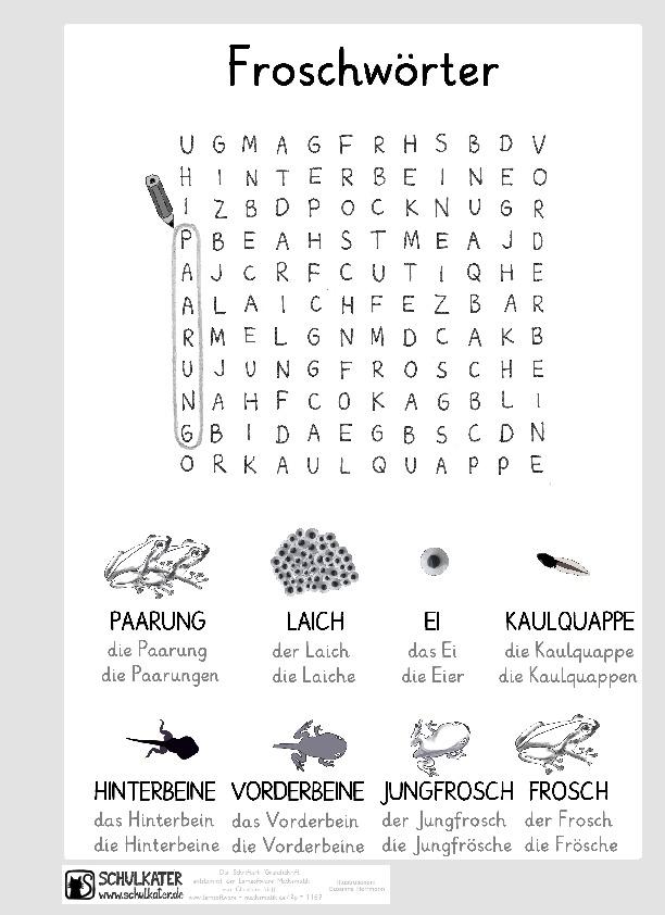 Arbeitsblatt für DaZ-Kinder: Froschwörter - Schulkater