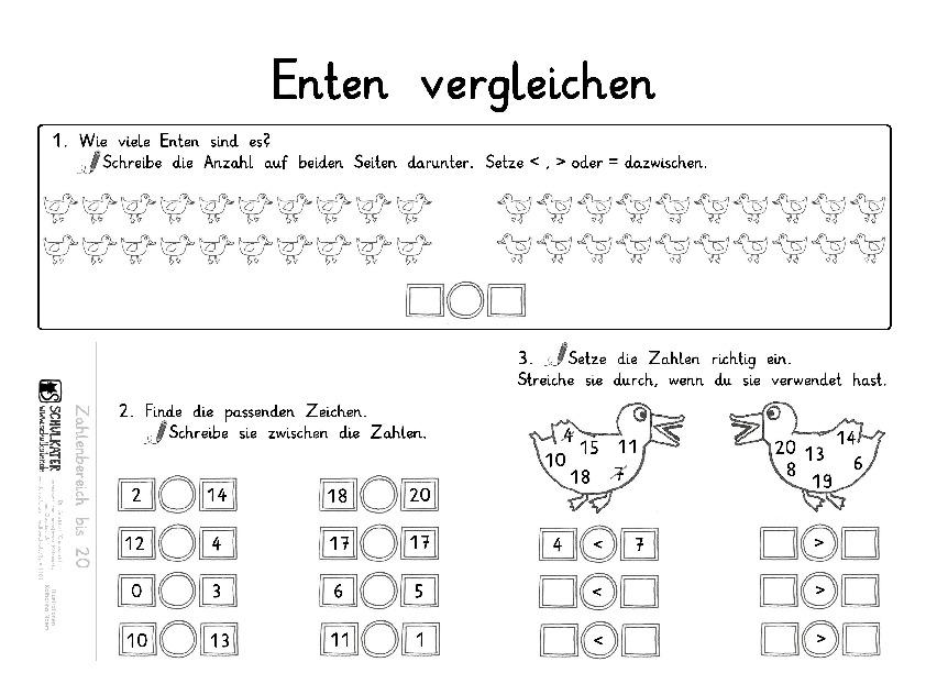 Differenziertes Arbeitsblatt: Enten vergleichen - Schulkater