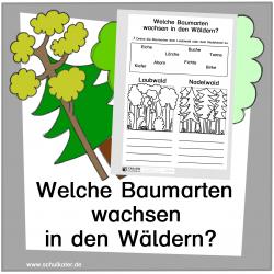 Lebensraum Wald: Waldarten 2