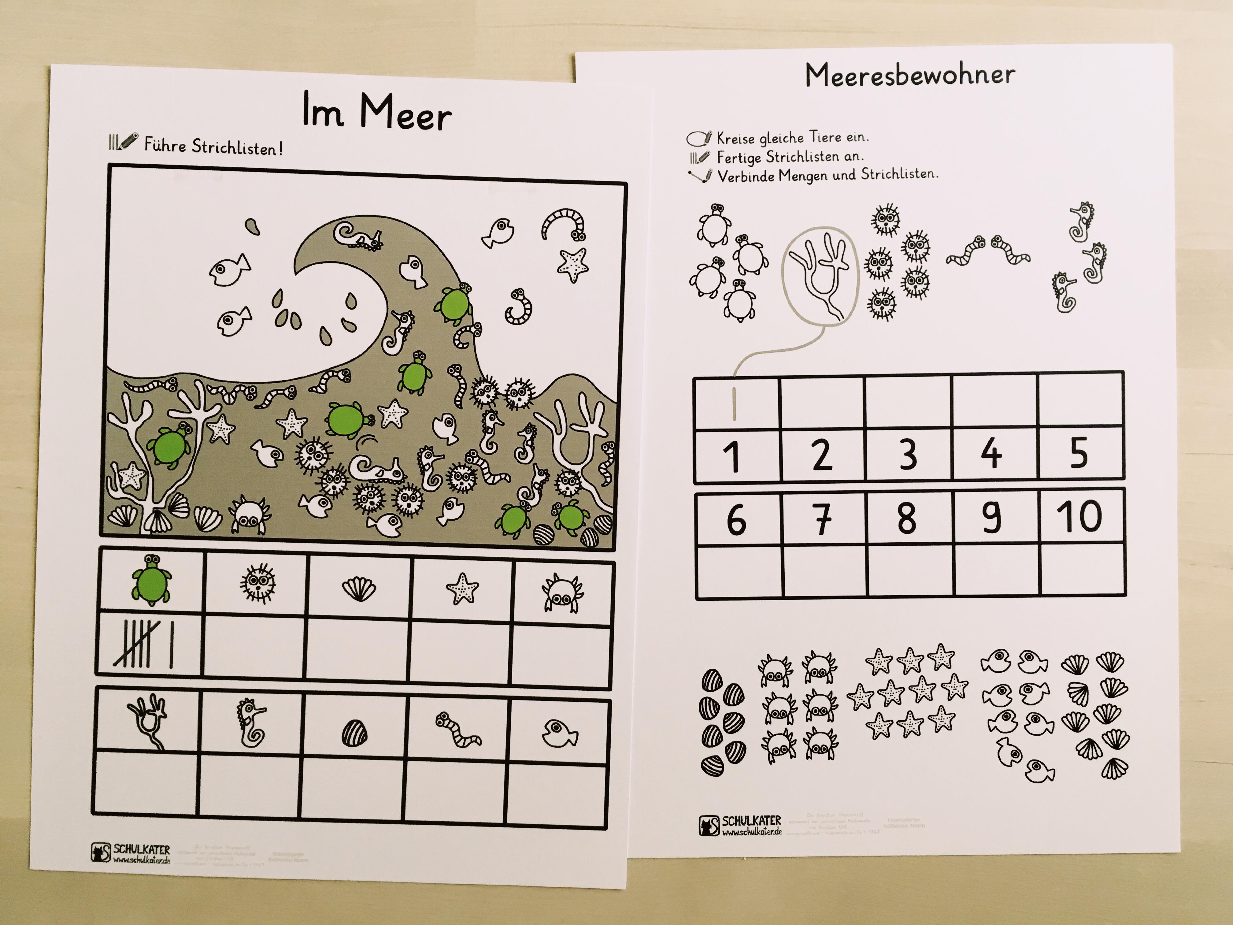 Neues Material für Mathematik in Klasse 20 Schildkröten ...