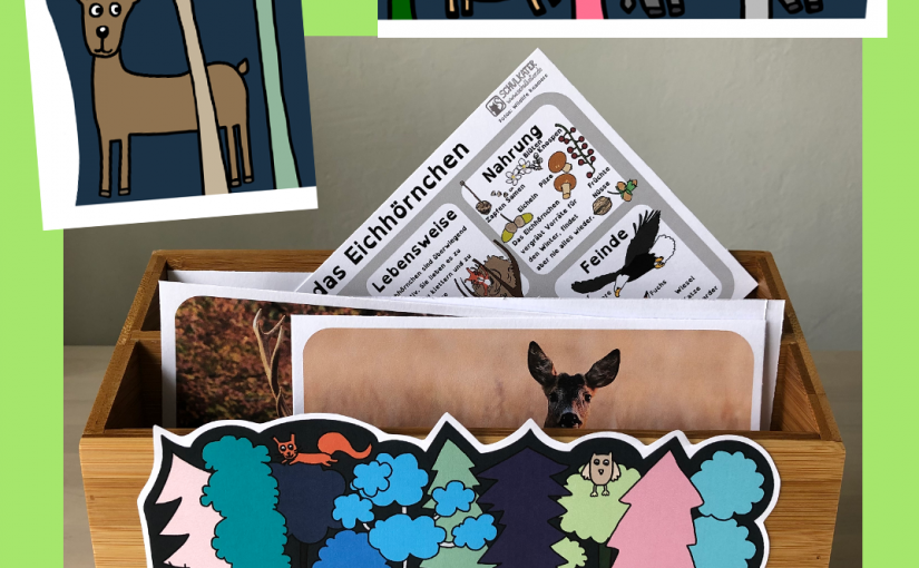 So sieht meine Waldtierkartei aus – mit selbstgezeichneter Themenkarte