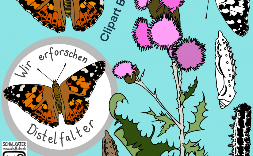 Distelfalter Cliparts für dein Unterrichtsmaterial – nicht kommerzielle Nutzung